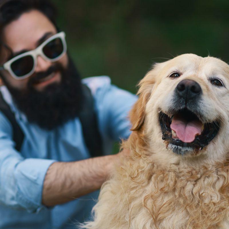 Albergo per Cani